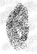 DETECTIVE finger frint